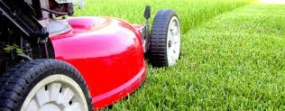 Mow it ALL Lawn care